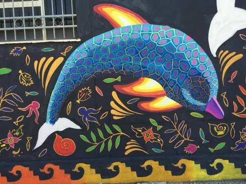 Delfini a San Gavino Monreale