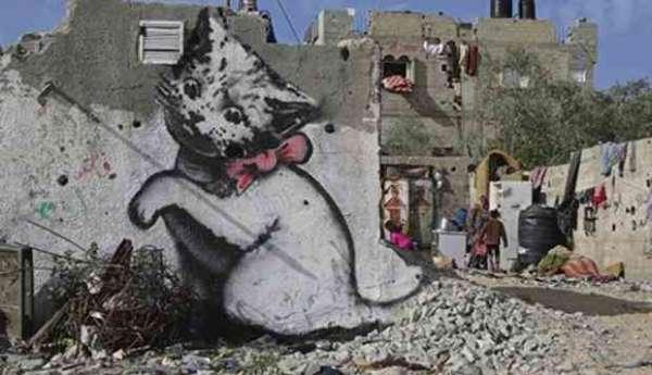 Banksy - gattino a Gaza