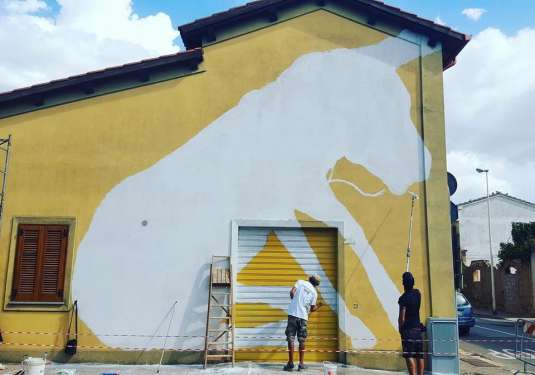 Il mulo sardo a San Gavino Monreale