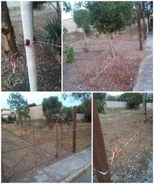 """Area dedicata ai nostri """"concittadini"""" a 4 zampe"""