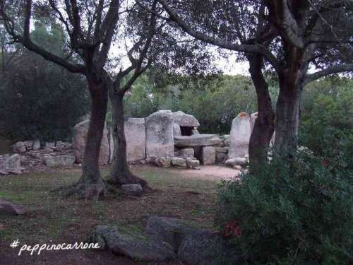Su Mont'e s'Abe - Tomba dei giganti - Olbia