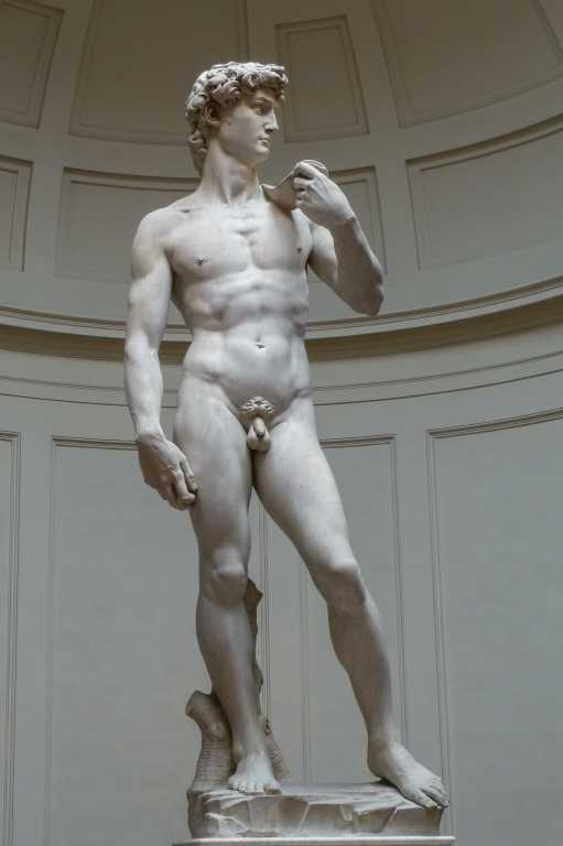 David di Michelangelo - Firenze - Toscana
