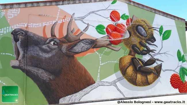 San Gavino: una battaglia per la salvaguardia della natura