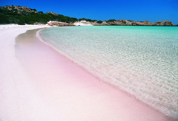 Spiaggia Rosa - Isola di Budelli (OT) Sardegna, Italia
